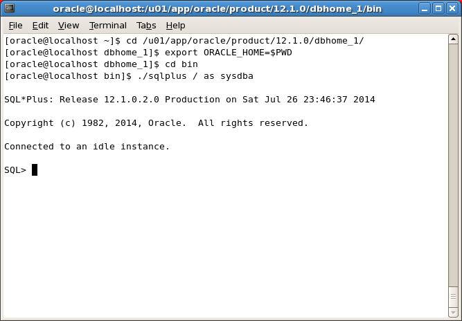 2014-07-26 23_46_52-Oracle 12c 12102 [Running] - Oracle VM VirtualBox