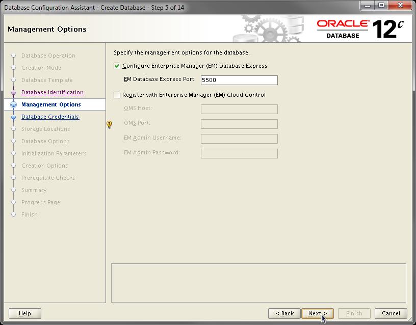 2014-07-30 11_55_23-Database Configuration Assistant - Create Database - Step 5 of 14